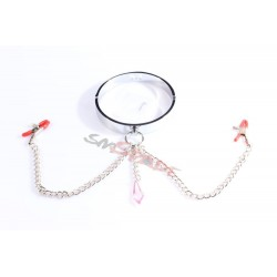 Stainless steel restraint collar with chain nipple clamps